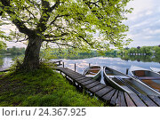 Купить «Germany, Bavaria, Fünfseenland area, Wesslinger lake, Munich, Upper Bavaria, bridge, boat, morning, sunrise, mood, spring, summer, leaves, trees, skys, clouds, calm, tranquil, panorama, scenery,», фото № 24367925, снято 14 декабря 2018 г. (c) mauritius images / Фотобанк Лори