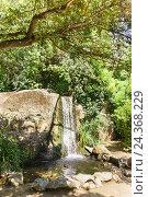 Купить «Стекающий по камню поток воды в зарослях деревьев», фото № 24368229, снято 6 июня 2016 г. (c) Наталья Гармашева / Фотобанк Лори