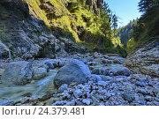 Купить «Course of a stream in the Almbachklamm (gorge)», фото № 24379481, снято 16 августа 2018 г. (c) mauritius images / Фотобанк Лори