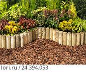 Купить «Garden, patch, palisade, plants», фото № 24394053, снято 21 января 2018 г. (c) mauritius images / Фотобанк Лори
