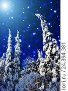 Купить «Яркая луна над ночным зимним лесом», фото № 24394381, снято 2 февраля 2014 г. (c) Евгений Ткачёв / Фотобанк Лори