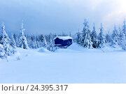Одинокий дом в глухом зимнем лесу. Стоковое фото, фотограф Евгений Ткачёв / Фотобанк Лори