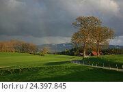 Купить «Switzerland, Fribourg, rain clouds passing over the alpine upland,», фото № 24397845, снято 17 августа 2018 г. (c) mauritius images / Фотобанк Лори