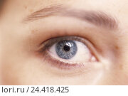Купить «Woman, look, eye, close up, young, eye area, eyebrow, colour eyes, blue, sense, see, detail», фото № 24418425, снято 25 сентября 2002 г. (c) mauritius images / Фотобанк Лори