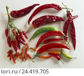 Купить «Chilli pods, chillis, red, green, freshly, dryly, Still life, Solanaceae, food, eat, vegetables, spices, paprika, paprika, peppers, chilli, pepper pods, chilli, Capsicum, cut outs», фото № 24419705, снято 14 ноября 2002 г. (c) mauritius images / Фотобанк Лори
