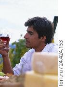 Купить «Vineyard, man, red wine, wine degustation, tread lifestyle, wine, drink, eat, red wine glass, wineglass, cost, taste, try, dégustation, cheese, snack,...», фото № 24424153, снято 10 января 2002 г. (c) mauritius images / Фотобанк Лори