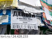 Купить «Деньги в долг - объявление на столбе», эксклюзивное фото № 24428233, снято 29 июня 2016 г. (c) Володина Ольга / Фотобанк Лори