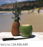 Купить «Brazil, Arraial d'Ajuda, beach, pineapple, coconut, knife, South America, close postage Seguro, sandy beach, fruit, fruits, tropical fruits, refreshment...», фото № 24436645, снято 27 мая 2003 г. (c) mauritius images / Фотобанк Лори