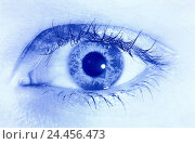 Купить «Eye see, visually, examination, foresight, view, search, orientation, look out, vision, future woman, female, humanely, view, sense, sense, eyelashes, irises, pupil, manipulated, blue», фото № 24456473, снято 12 января 2001 г. (c) mauritius images / Фотобанк Лори