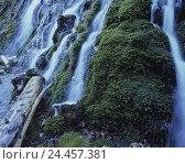 Купить «Mountain stream, rock, waterfall, detail, mountain brook, brook, water, flow, nature, ecosystem, moss, bemoost, wet, moisture», фото № 24457381, снято 4 июля 2002 г. (c) mauritius images / Фотобанк Лори