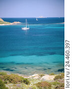Купить «Italy, Sardinia, Capo coda Cavallo, coast, bay, sailboats, Europe, Mediterranean island, island, region Baronia, coastal scenery, bile coast, sea, water...», фото № 24460397, снято 9 декабря 2005 г. (c) mauritius images / Фотобанк Лори