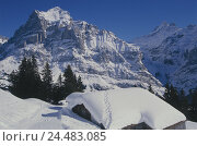 Купить «Switzerland, the Bernese Oberland, Grindelwald, hut, snow-covered, Europe, canton Bern, mountains, hut, mountain hut, roof, snowy, snow, loneliness, Idyll, seclusion, winter», фото № 24483085, снято 14 мая 2003 г. (c) mauritius images / Фотобанк Лори