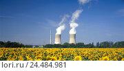 Купить «Germany, Bavaria, Lower Franconia, field Grafenrhein, nuclear power plant, cooling towers, sunflowers energy, power production, current, current production...», фото № 24484981, снято 19 мая 2005 г. (c) mauritius images / Фотобанк Лори