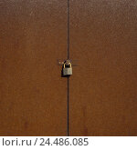 Купить «Iron door, old, rusty, sealed, detail, padlock, input, goal, door, iron, metal, metal goal, rusts, rust, corrosion, closed, finished, lock, to, locked, enclosed, impossibly, security, protection, seal», фото № 24486085, снято 11 октября 2005 г. (c) mauritius images / Фотобанк Лори
