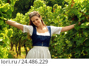 Купить «Vines, wine queen, smile, represent arms outstretched, half portrait, woman, young, adults, 20-25 years, 20-30 years, 25-30 years, beauty, national costume...», фото № 24486229, снято 27 мая 2018 г. (c) mauritius images / Фотобанк Лори