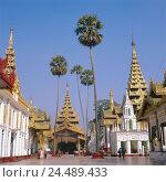 Купить «Myanmar, Yangon, Shwedagon pagoda, visitor, Asia, Indochina, Burma, Shwedagon Paya, temple, pagodas, Stupas, gilds, art, culture, architecture, architecture...», фото № 24489433, снято 28 ноября 2005 г. (c) mauritius images / Фотобанк Лори