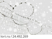 Купить «barb wire fence over gray sky and snow», фото № 24492269, снято 30 сентября 2015 г. (c) Syda Productions / Фотобанк Лори