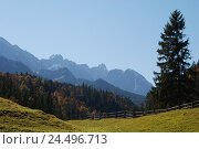Купить «Germany, Bavaria, mountain landscape, Wetterstein Range, meadow, fence, wood, trees, autumn, Upper Bavaria, Werdenfels, scenery, nature, Idyll, mountains...», фото № 24496713, снято 29 февраля 2008 г. (c) mauritius images / Фотобанк Лори