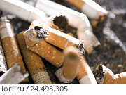 Купить «Ashtray, filter-tip cigarettes, grinded out, detail,», фото № 24498305, снято 23 сентября 2018 г. (c) mauritius images / Фотобанк Лори