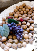 Купить «Plate, fruits, walnuts, Stilllife,», фото № 24501189, снято 14 мая 2009 г. (c) mauritius images / Фотобанк Лори
