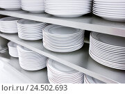 Купить «Shelf, plate, stacked, dishes, porcelain, batch, order, cleanly, white, cuisine,», фото № 24502693, снято 5 мая 2009 г. (c) mauritius images / Фотобанк Лори