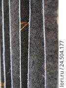Купить «Felt, curtain, grey, folds, detail, blur,», фото № 24504177, снято 18 июля 2018 г. (c) mauritius images / Фотобанк Лори