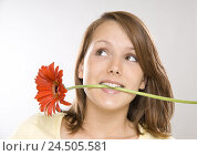 Купить «Teenagers, girls, view side view, mouth, flower, smile, portrait, person, woman, young, gerbera, blossom, flower odour, odour, facial play, view, happy, expectation, cogs,», фото № 24505581, снято 9 июля 2009 г. (c) mauritius images / Фотобанк Лори