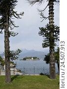 Купить «Italy, Baveno, Lago Maggiore, lake, Borromäische island, Isola Bella,», фото № 24507913, снято 24 ноября 2009 г. (c) mauritius images / Фотобанк Лори