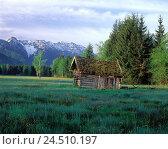Купить «Germany, Werdenfels, Murnauer moss, wooden hut, Bavarians, Murnau in the series lake, nature reserve, Moore's area, mountain landscape, meadow, barn», фото № 24510197, снято 27 июля 2001 г. (c) mauritius images / Фотобанк Лори