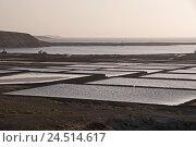 Купить «Spain, Canary islands, Lanzarote, Salinas de Janubio,», фото № 24514617, снято 2 февраля 2010 г. (c) mauritius images / Фотобанк Лори