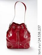 Купить «Bag, handbag, strap, red,», фото № 24538237, снято 19 сентября 2018 г. (c) mauritius images / Фотобанк Лори