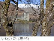 Купить «Scotland, Argyll and Bute, hole Awe, castle Kilchurn Castle,», фото № 24538445, снято 15 февраля 2010 г. (c) mauritius images / Фотобанк Лори
