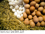 Купить «Poultry eggs, freshly, white, brown, straw, market, product, sales, Spain, Barcelona, market La Boqueria, economy, trade, food, eggs, freshly, many, heaps...», фото № 24541221, снято 3 сентября 2008 г. (c) mauritius images / Фотобанк Лори