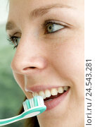 Купить «Woman, smile young, detail, toothbrush, person, look, bite, cogs, beauty, cleanly, cultivated, course, icon, cog care, personal care, oral hygiene, cog...», фото № 24543281, снято 29 сентября 2008 г. (c) mauritius images / Фотобанк Лори