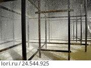 Купить «Coal-fired power station, cooling tower, water cooling,», фото № 24544925, снято 19 сентября 2008 г. (c) mauritius images / Фотобанк Лори
