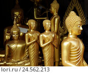 Купить «Buddhas, passed away, Thailand, tourism, travelling, religion, faith, Buddhism, statues, figures, golden,», фото № 24562213, снято 5 января 2011 г. (c) mauritius images / Фотобанк Лори