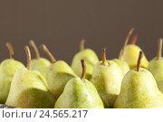 Купить «Pears, ripe, eatable,», фото № 24565217, снято 18 июня 2018 г. (c) mauritius images / Фотобанк Лори