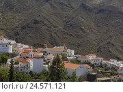 Купить «Spain, grain Canaria, Canary islands, Tejeda, local view,», фото № 24571121, снято 15 июня 2007 г. (c) mauritius images / Фотобанк Лори