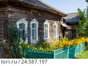 Купить «Частный деревянный дом с зарослями золотого шара в палисаднике», фото № 24587197, снято 14 августа 2016 г. (c) Александр Цуркан / Фотобанк Лори