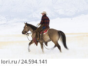 Купить «Cowboy riding on Quarter Horse through snow-covered landscape,», фото № 24594141, снято 24 мая 2018 г. (c) mauritius images / Фотобанк Лори