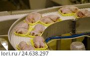Купить «Poultry meat during production process», видеоролик № 24638297, снято 30 сентября 2016 г. (c) Илья Насакин / Фотобанк Лори