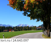 Купить «Germany, Bavaria, Krün, Wetterstein Range, autumn, Upper Bavaria, street, country road, view, mountains, mountains, Alpspitze, Zugspitze, heavens, cloudless...», фото № 24643097, снято 6 ноября 2007 г. (c) mauritius images / Фотобанк Лори