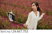 Купить «Pretty Vietnamese girl taking photo with a selfie stick on meadow with purle flowers», видеоролик № 24667753, снято 13 декабря 2016 г. (c) Mikhail Davidovich / Фотобанк Лори