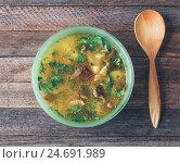 Купить «Грибной суп с зеленым луком», фото № 24691989, снято 10 июля 2020 г. (c) Андрей С / Фотобанк Лори