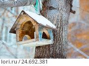 Заснеженная кормушка для птиц на дереве. Стоковое фото, фотограф Елена Руй / Фотобанк Лори