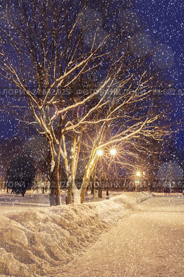 Купить «Winter night landscape under falling snowflakes», фото № 24692925, снято 19 декабря 2017 г. (c) Зезелина Марина / Фотобанк Лори