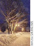 Winter night landscape under falling snowflakes, фото № 24692925, снято 25 декабря 2016 г. (c) Зезелина Марина / Фотобанк Лори