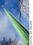 Купить «ESY-025266396», фото № 24700205, снято 14 июля 2020 г. (c) easy Fotostock / Фотобанк Лори