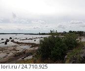 Купить «Берег Белого моря в отлив. Поселок Рабочеостровск близ Кеми. Карелия», фото № 24710925, снято 6 августа 2016 г. (c) Заноза-Ру / Фотобанк Лори