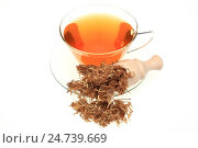 Купить «Medicinal tea made of t he dried blossoms of medicinal plant Albizzia», фото № 24739669, снято 18 августа 2018 г. (c) age Fotostock / Фотобанк Лори